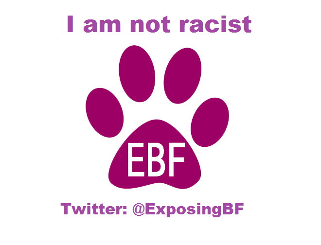 EBF Not racist transfer 4